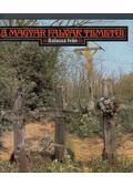 A magyar falvak temetői - Balassa Iván