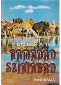 Ramadán Szíriában - Dallos Attila