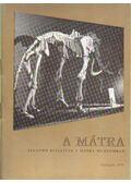 A Mátra állandó kiállítás a Mátra Múzeumban - Dr. Nagy Gyula