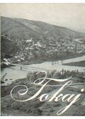 Tokaj - Dr. Nagy Lajos