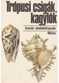Trópusi csigák, kagylók - Dr. Podani János