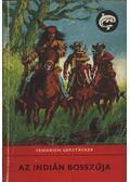 Az indián bosszúja - Friedrich Gerstacker