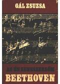 Az én zeneszerzőm Ludwig van Beethoven - Gál Zsuzsa