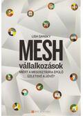 Mesh vállalkozások - Gansky, Lisa