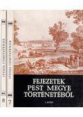 Studia Comitatensia 7-8. - Fejezetek Pest megye történetéből - Ikvai Nándor