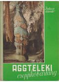 Aggteleki cseppkőbarlang - Jakucs László