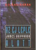 Az éj leple alatt - James Grippando