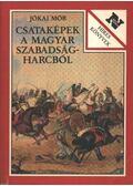 Csataképek a magyar szabadságharcból - Jókai Mór