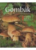 Gombák - Knoop, Martin