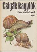 Csigák, kagylók - Krolopp Endre