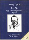 N. N. - Egy szerelemgyermek regénye - Krúdy Gyula