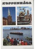 Koppenhága - Lindner László