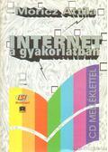 Internet a gyakorlatban - Móricz Attila