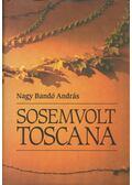 Sosemvolt Toscana - Nagy Bandó András