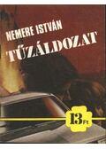 Tűzáldozat - Nemere István