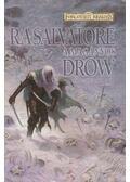 A magányos drow - R.A. Salvatore