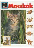 Macskák - Rainer Köthe