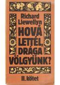 Hová lettél, drága völgyünk? I-II. kötet - Richard Llewellyn