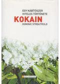 Kokain - Streatfeild, Dominic