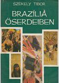 Brazília őserdeiben - Székely Tibor
