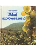 Tokaj szőlővesszein - Taar Ferenc