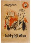 Puddingfejű Wilson - Twain, Mark