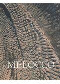 Melocco Miklós - Wehner Tibor