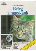 Beteg a macskánk - Weingartner, Vera