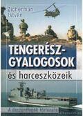 Tengerészgyalogosok és harceszközeik - Zicherman István