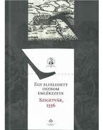 Egy elfeledett ostrom emlékezete - Szigetvár, 1556 - Fodor Pál