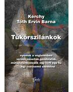 Tükörszilánkok - Kérchy Tóth Ervin Barna