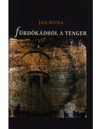 FÜRDŐKÁDBÓL A TENGER - AVAGY KÜLÖNBSÉGBEN A HASONLÓSÁG - ÜKH 2009 - Jász Attila