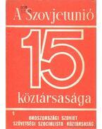 A Szovjetunió 15 köztársasága 1. (Oroszországi Szovjet Szocialista Köztársaság) - Ábel Péter (szerk.), Garamvölgyi István, Drechsler Ágnes dr., Kovonecz Ilona- Radó György