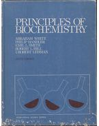 Principles of Biochemistry - Abraham White, Philip Handler, Emil L. Smith, Robert L. Hill, I. Robert Lehman