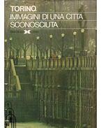 Torino immagini di una cittá sconsciuta - Aldo Bubbio, Ezio Capostagno, Teresio Dufour, Savino Mansi, Franco Minelli