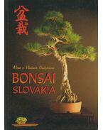 Bonsai Slovakia - Alena Ondejcíks, Vladimír Ondejcíks