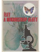 Élet a mikroszkóp alatt - Aliverti, M.G., Laudi, G., Ciccioli, M.