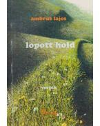 Lopott hold - Ambrus Lajos