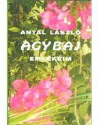 Agybaj (dedikált) - Antal László