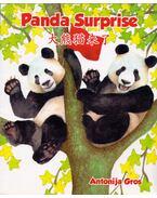 Panda Surprise - Antonija Gros