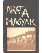 Arat a magyar (dedikált) - Szalai Júlia, Lányi András, Miszlivetz Ferenc, Radnóti Sándor, Vajda Ágnes