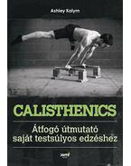Calishtenics - Ashley Kalym