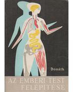 Az emberi test felépítése - Donáth Tibor