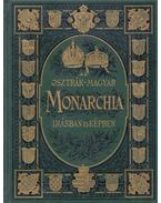 Az Osztrák-Magyar Monarchia írásban és képben VII. - Magyarország II.