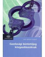 Gazdasági büntetőjog közgazdászoknak - Gál István László