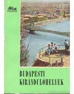 Budapesti kirándulóhelyek - Róna Tibor