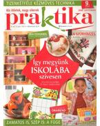 Praktika 2008. szeptember 9. szám - Boda Ildikó (főszerk.)