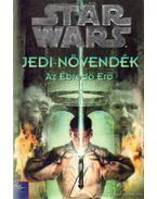 Jedi-növendék: Az Ébredő Erő - Wolverton, Dave