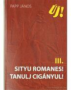 Sityu romanes! - Tanulj cigányul! - Papp János