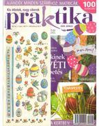 Praktika 2009. április 4. szám - Boda Ildikó (főszerk.)